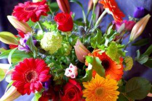 цветы2-гор