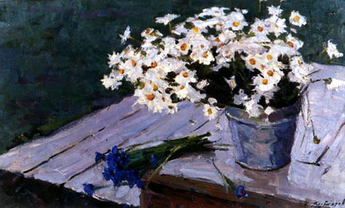 буторов, ромашки, цветы