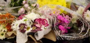 трофимов, краски времени, цветы